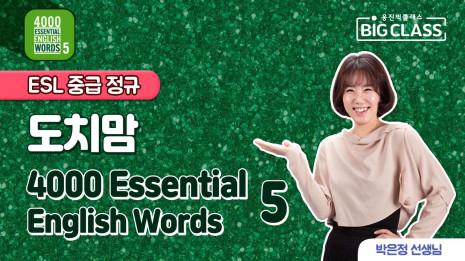 도치맘 4000 Basic English Words 2월